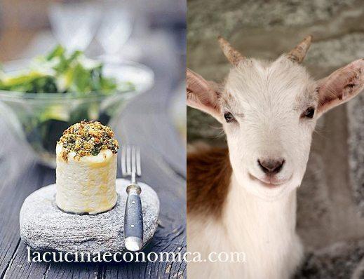 formaggio-e-dieta-say-cheese
