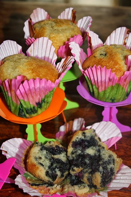 muffins-ai-mirtilli-ricetta-originale-5713648
