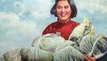 Ricette della Rivoluzione culturale Cinese